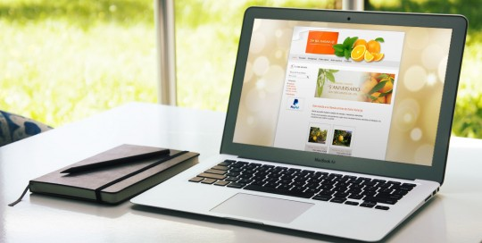 Tienda online Doña Naranja